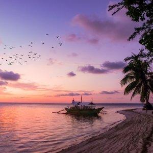 $164起 海景舱$199起5天加州圣卡塔丽娜岛游轮 洛杉矶往返 加州小夏威夷岛