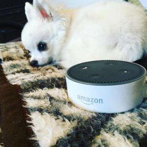 现价£39.99(原价£49.99)Amazon Echo Dot Alexa 2代语音助手 双色可选