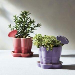 送花型酷彩陶瓷花盆 价值$30Le Creuset官网购买任意产品满$150