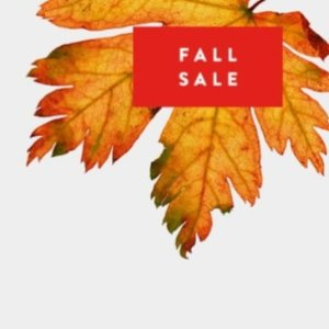 Up to 60% OffNordstrom Fall Fashion Sale