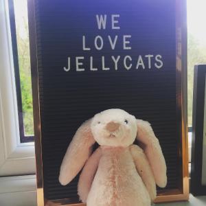 """史低85折""""世界上最柔软的玩具兔子"""" Jellycat 上新"""