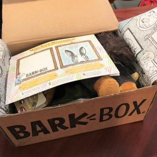 每天爱你多一点 | BarkBox 汪星人订阅礼盒