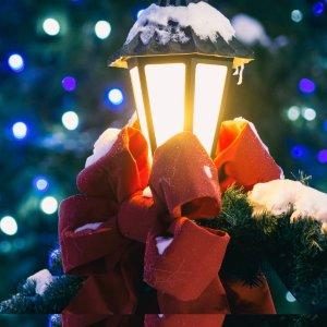低至$17.25/人  圣诞气息满满弗吉尼亚威廉斯堡布希花园圣诞小镇家庭套票 2.8折起