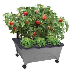 低至5.1折+包邮The Home Depot 精选花床、花盆及园艺养护产品一日特卖