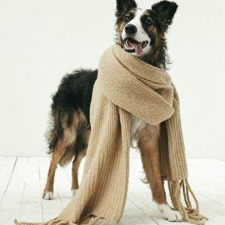 Up to 70% OffScarves Sale @ Nordstrom
