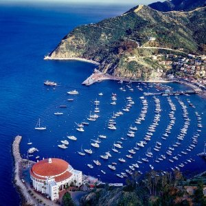 from $179Mexico cruise + Catalina Island Cruise