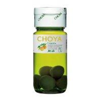 Choya 梅酒 500ml