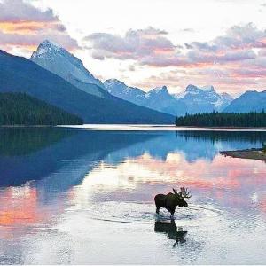 From $6487-Day Alaska Cruises on Princess Cruise