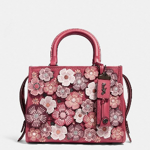 $25 Off Orders $250 Rogue 25 with Tea Rose @ Coach