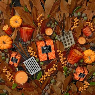满$200送金秋南瓜蜡烛Nest Fragrances 官网香氛蜡烛、扩香热卖