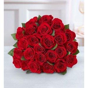 24支红玫瑰