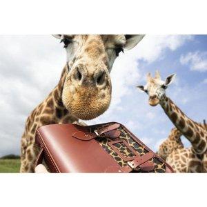 Cambridge SatchelSmall Portrait Backpack 单肩包 - Brandy & Giraffe Haircalf