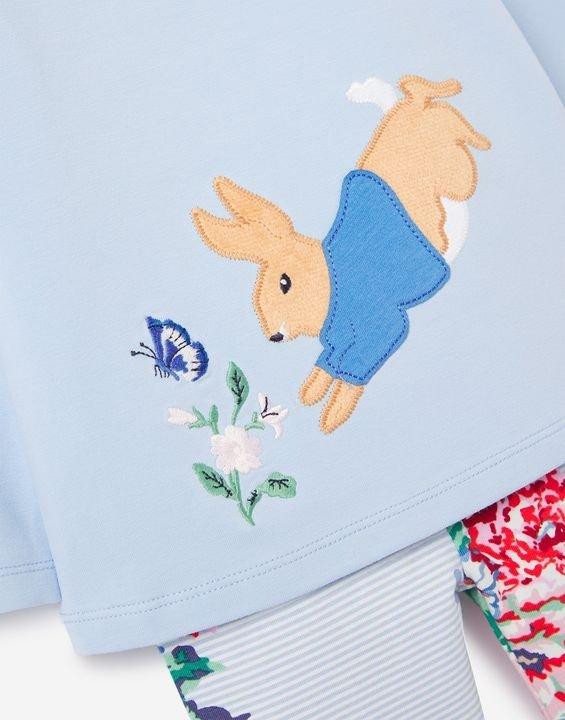 婴儿Peter Rabbit套装