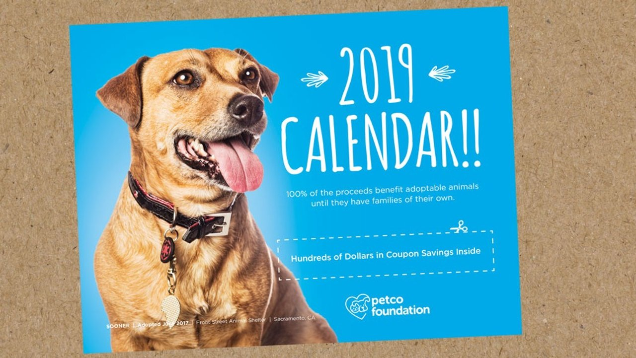 Petco 2019日历:包含着线上线下都不会告诉你的折扣和免费领取物品!