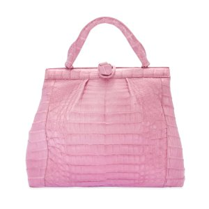Nancy Gonzalez手提包