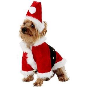Rubie's Costume CompanySanta Claus Dog Costume, Small - Chewy.com