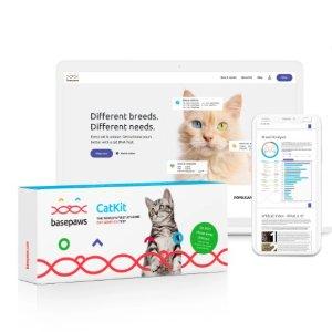 独家:Basepaws 猫咪品种DNA+健康检测套装