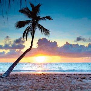 2.9折 单晚价格$58起多米尼加蓬塔卡那4星级海滩度假村折扣