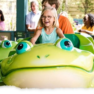 Pre-K Kids FreeDollywood Parks & Resorts