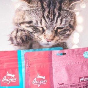 Orijen 渴望牌顶级宠物粮食、零食热卖
