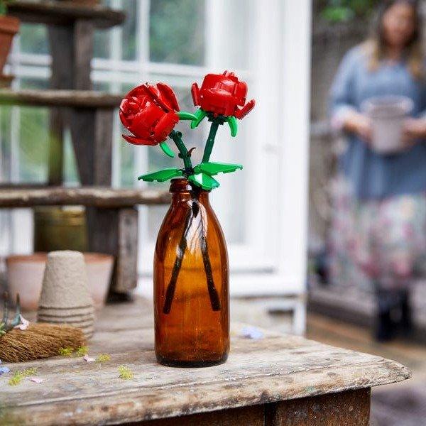玫瑰 40460 | Miscellaneous