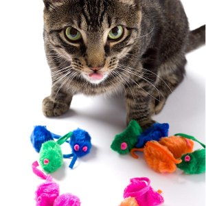 $2.84Hartz Just for Cats Kitty Frenzy Cat Toy