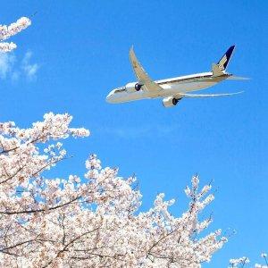 含税低至$457 搭乘新加坡航空洛杉矶至日本东京直飞往返机票超好价