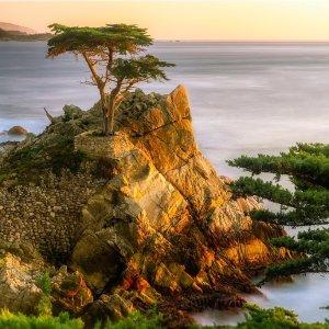$648起 停靠圣芭芭拉+圣地亚哥+洛杉矶公主游轮 加州一号公路海岸7天行程 旧金山起始