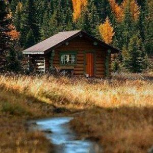 8折 £44.8/每晚 可容纳4人森林小木屋Forest of Dean露营中心 儿童时的梦想天地