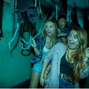 As Low as $46.99Ticket to Busch Gardens Williamsburg including Howl-O-Scream