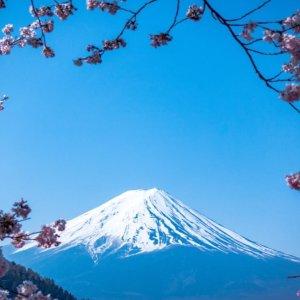 含税低至$522亚特兰大至日本东京往返机票超好价