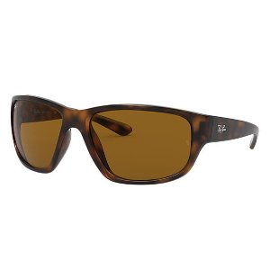 Ray-BanRB4300 茶色豹纹墨镜
