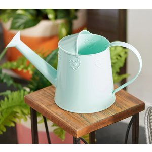 $10 off $25+Marigold Galvanized Detailed Watering Can - QVC.com