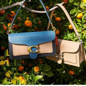 Earn up to $700 Gift CardSaks Fifth Avenue Coach Bags Sale