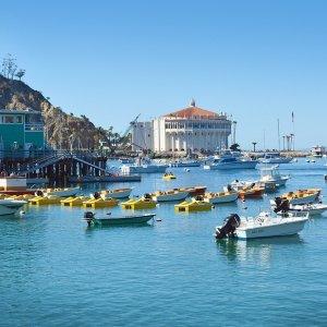 $282起 停靠加州的''夏威夷''岛圣卡塔利娜嘉年华游轮 5天4夜墨西哥行程 洛杉矶出发