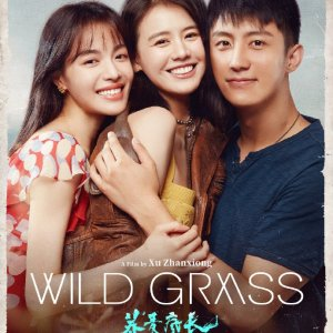 In theatres 9/10WILD GRASS US