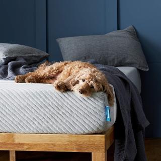 低至7折限今天:Leesa 精选床垫促销 可享100天试睡期