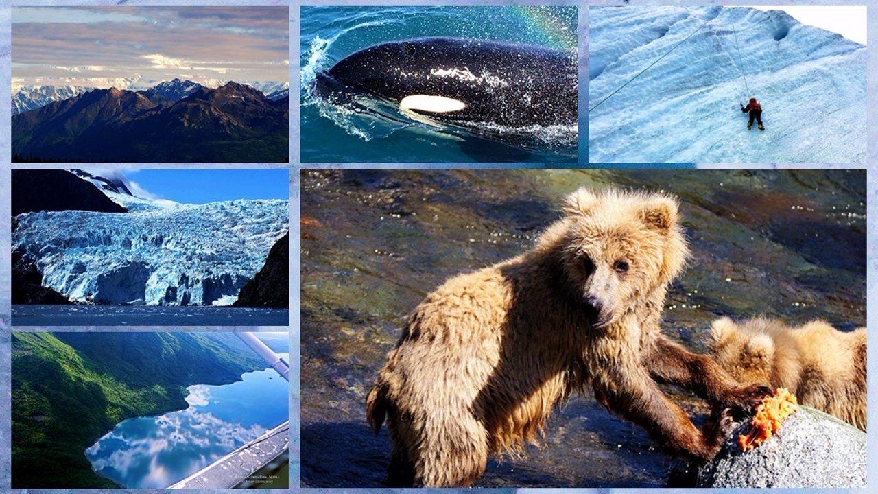 阿拉斯加 || 夏季不夜天:四个国家公园的精华