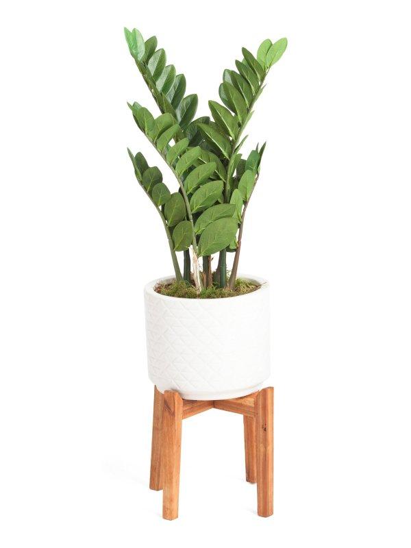 40in 绿植装饰物