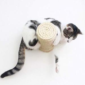 低至6折 + 额外8折Petco 墙壁猫窝、猫爬架、猫跳板等热卖