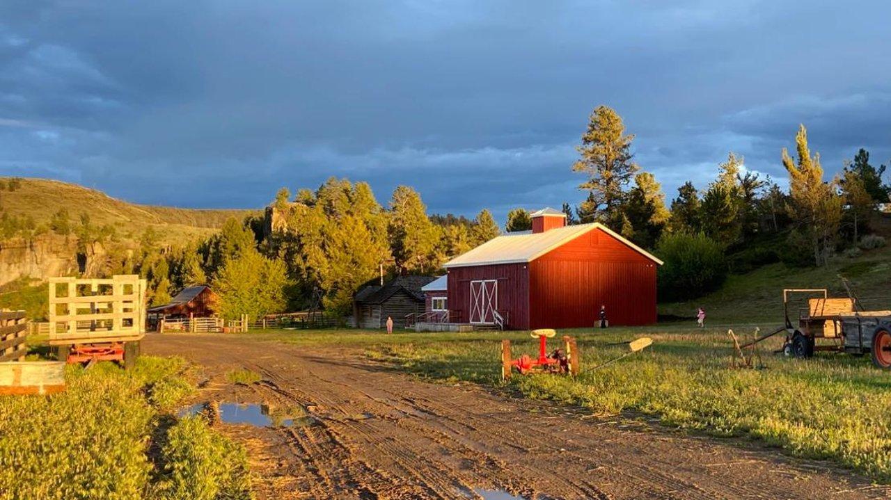 夏天可以逛农场啦!温哥华周边的采摘和动物农场推荐!