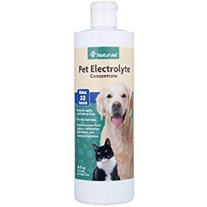 Amazon.com : NaturVet - Pet Electrolyte Concentrate for Dogs & Cats - Plus Breath Aid - 16 oz - Supports Proper Fluid Balance, Replenishes Electrolytes & Maintains Hydration - Great for Agility & Hunting Dogs : Pet Health Care Supplies : Pet Supplies