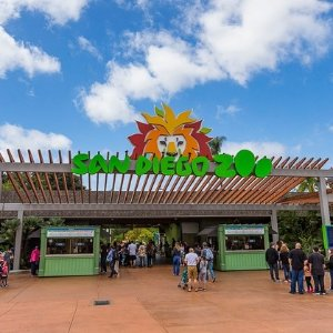 Starting from $58Ending Soon: San Diego Zoo Ticket