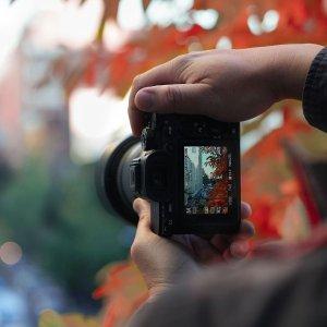 在家学摄影 大片随手来PPA 1100个摄影课程免费开放啦