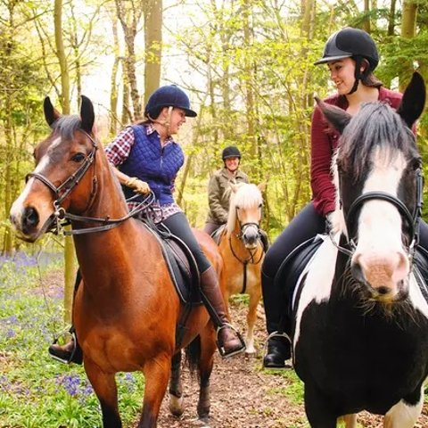 Starting at $12150-Minute Horseback Ride for Two Westside Riding School