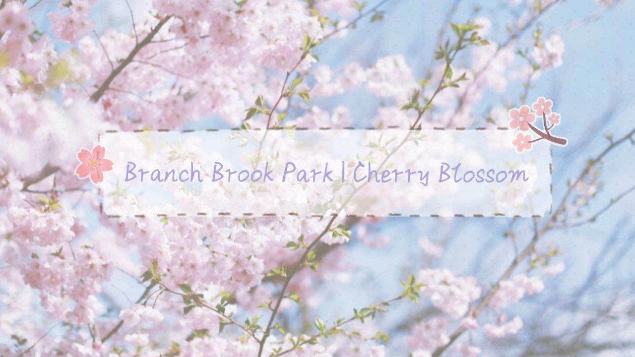 NYC Getaway Vol.2 | NJ Newark - Branch Brook Park春季赏樱指南