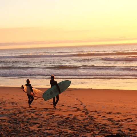 Starting at $19Recommandations for Surfing Locations Near Los Angeles