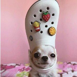 全部7折 £20就收大童款洞洞鞋Crocs官网 全场惊喜大促 超火爆洞洞鞋 新款也有
