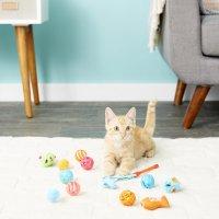 Hartz 猫咪玩具13件套