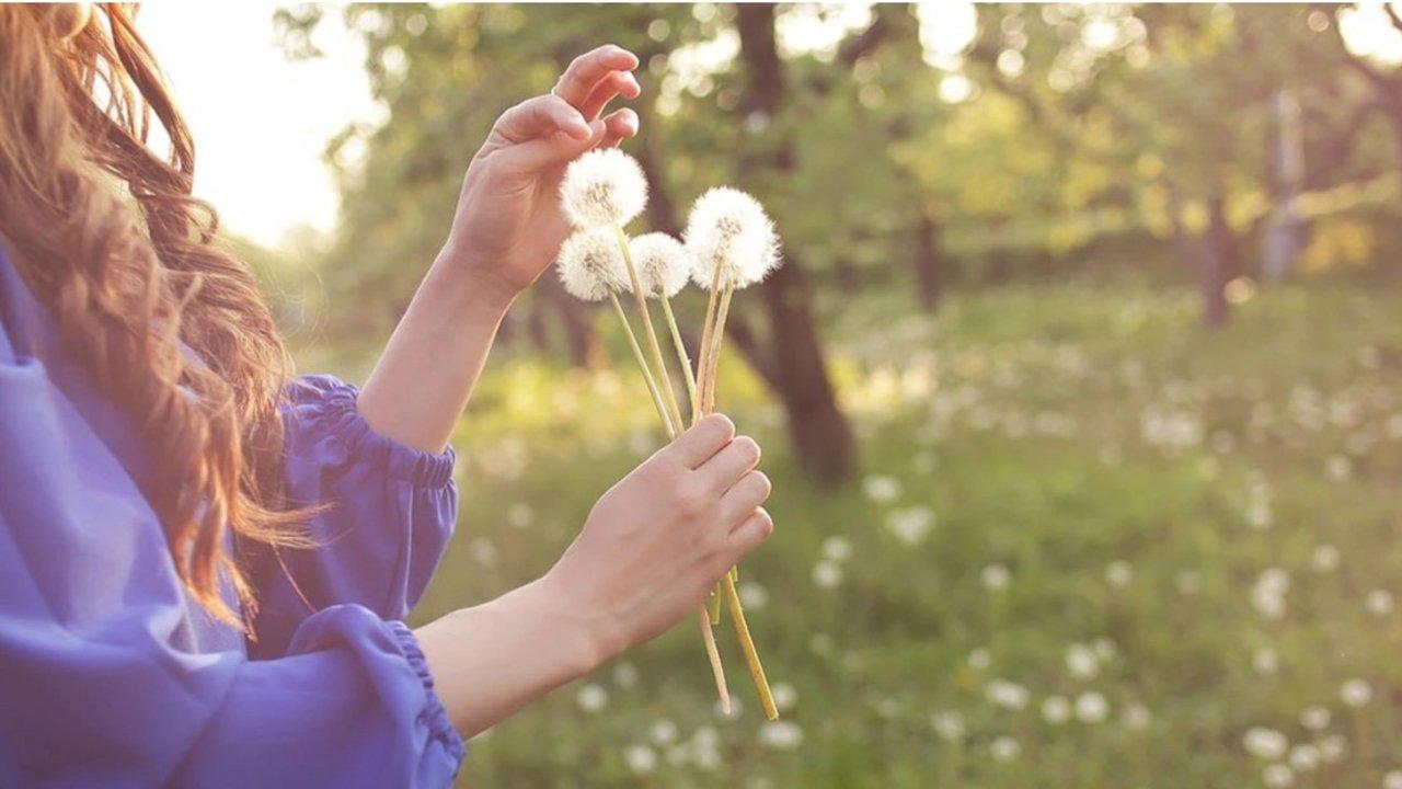 花粉过敏怎么办? | 花粉过敏症状、过敏性鼻炎预防、治疗与食疗偏方